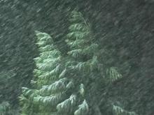 Roxboro snow