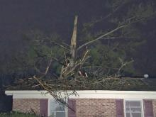 Storms down trees, knock out power in spots