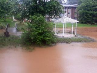 Muddy water breaches the banks of a pond at 2500 Wycliff Road in Raleigh.