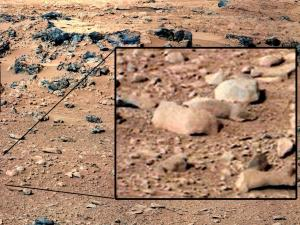 "An image taken by the Mars rover Curiosity went viral after UFO enthusiasts pointed to what was  called ""a cute rodent"""