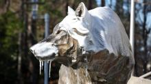 IMAGES: Arctic air brings bitter chill, school delays and power outages to area