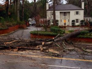 Oaks blown down by Saturday's storms blocked Glenwood Avenue near the Carolina Country Club.