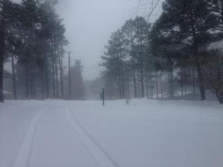 Snow in Southern Pines on Thursday, Feb. 12, 2014.