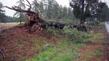 Storms cause tornado, damage in eastern NC