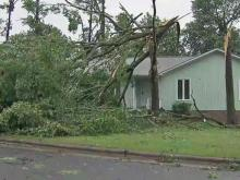 Trees downed in Durham