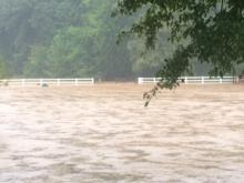 Rain flooded roads and yards Wednesday along Saddleridge Road in north Raleigh. (Photo courtesy: Jodi Rucker)