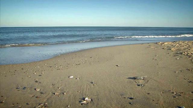 Coastal communities consider sea level forecast