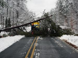 A downed tree blocked John Jones Road in Durham on Feb. 26, 2015. (Photo by John Cox)