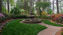 Spring blooms in the WRAL Azalea Gardens