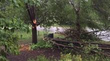 IMAGES: Severe storms cause power outages, downed trees across central NC
