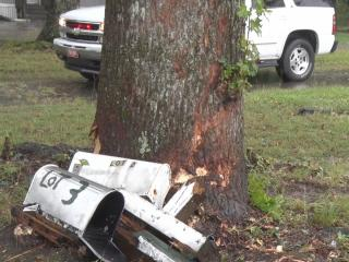 A driver died Monday morning after hydroplaning and hitting a tree.