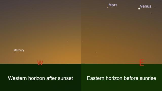 The inner planets Mercury and Venus are visible this week after sunset and before sunrise.