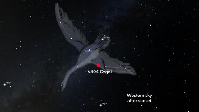 V404 Cygni is a binary black hole located in the constellation Cygnus the swan 7840 light years away (Credit: Stellarium/Rice)