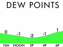 Dew point projection for Tuesday, January 19th in Raleigh.