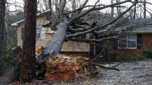 Family escapes after tree falls on Durham home