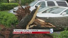Heavy wind, hail from Thursday storm damage property