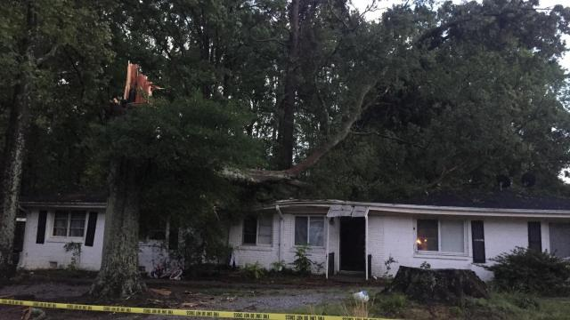Tree on Garner home