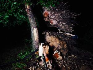 Severe weather caused significant damage in Durham Wednesday night.