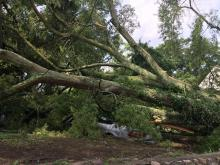 A storm on Wednesday, June 29 created significant damage, particularly in Wake and Durham Counties.