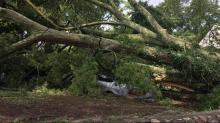 IMAGES: Wednesday storms leave thousands without power in Wake, Durham