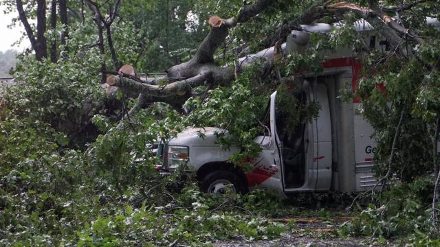 Tree falls on rental truck