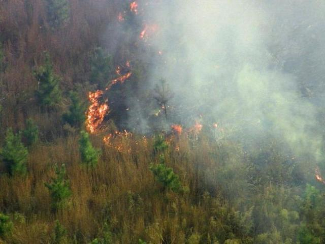A wildfire burned across about eight acres outside Holly Springs Monday afternoon.<br/>Photographer: Keith Baker