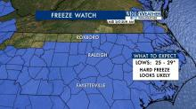 IMAGES: Coldest weekend yet, first freeze in the Triangle Saturday night