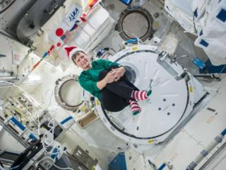 Expedition 50 Flight Engineer Peggy Whitson of NASA sent holiday greetings and festive imagery from the Japanese Kibo laboratory. Credit: NASA/JSC