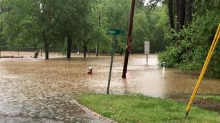 Flooded park near McNeill St and Wake Forest Rd