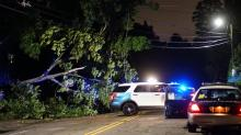 IMAGES: Severe thunderstorm causes power outages, fallen trees