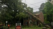 IMAGES: Triangle residents clean up downed trees, crushed roofs after strong storms