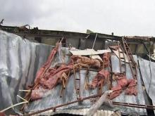 Sampson County tornado damage