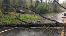 IMAGES: Severe storms cause damage across NC