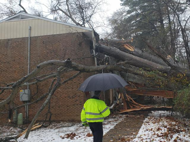 A tree fell on a building in the Oakwood apartment complex in Sanford.