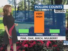 Pollen Coverage :: WRAL com