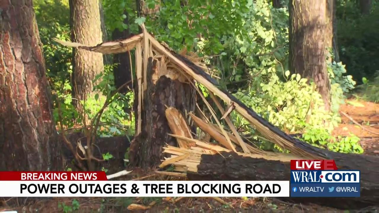 Storms bring trees down, cause power outages :: WRAL com