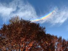 That upside down rainbow you saw this week is called a circumzenithal arc