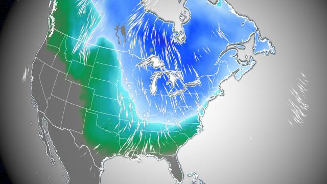 Polar vortex whips millions of Americans with strong winds, record lows and even snow