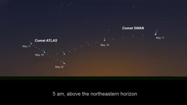 Comets ATLAS and SWAN