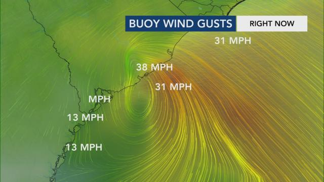 Wind gusts from Tropical Storm Bertha