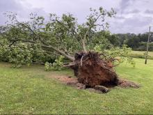 Tornado damage in Warren County