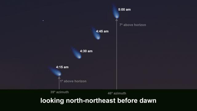 Comet NEOWISE position the week of July 5