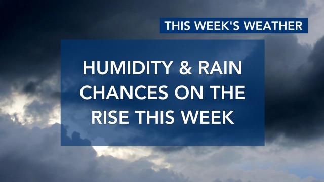 Humidity and rain chances on the rise this week