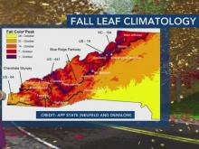Some places across N.C. could see early sightings of fall leaves