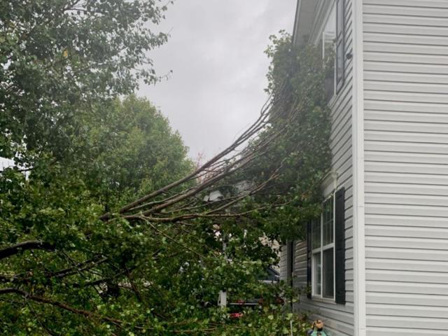Home in Browns Summit, in Guilford County, nearly hit by a fallen tree.
