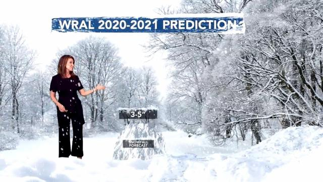 Winter 2020 outlook: Some snow, snaps of cold