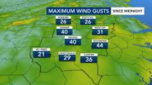IMAGES: Wind gusts up to 40 mph reported overnight across the Triangle
