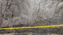 IMAGES: Winter weather photos: Icy glaze, freezing rain in NC