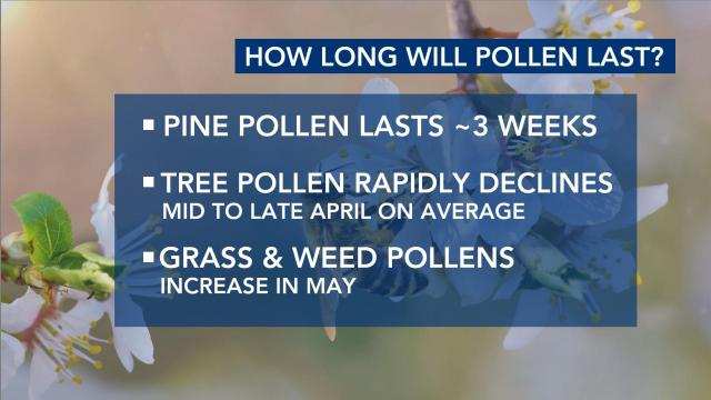 How long does pollen last?
