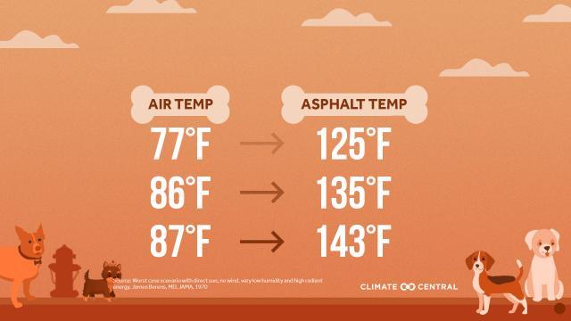 Asphalt temperatures